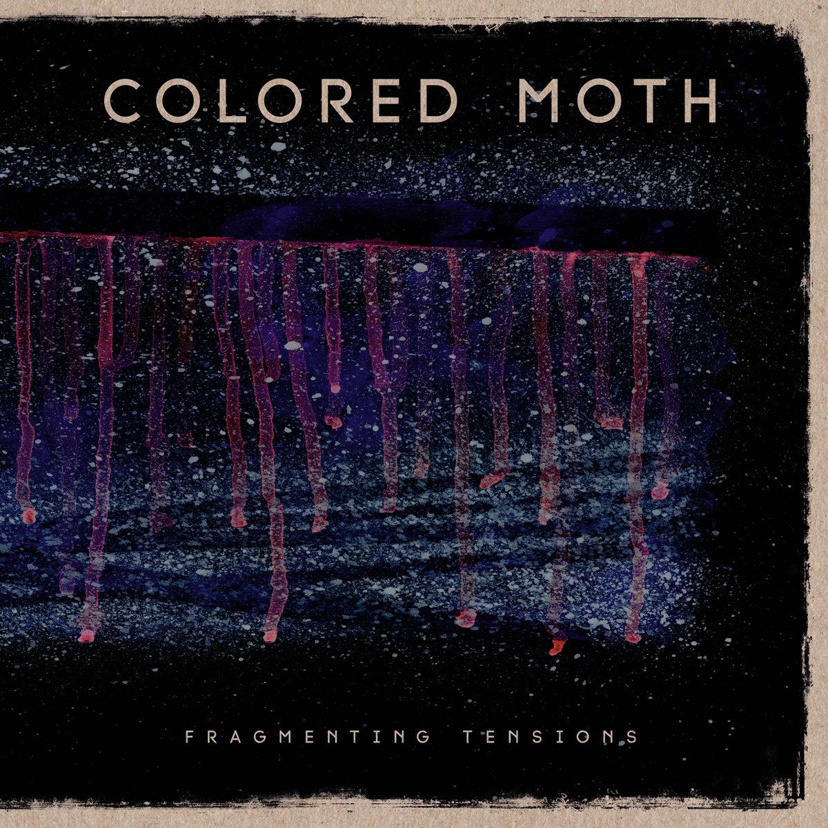 Colored Moth